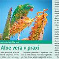 Článek v časopise Nová exota 7-8/2011